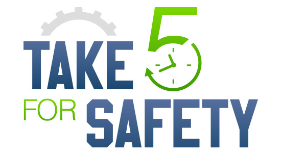 take 5 for safety delta bjds
